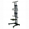 Vertical LCD Advertising TV Stand with Dual Screens